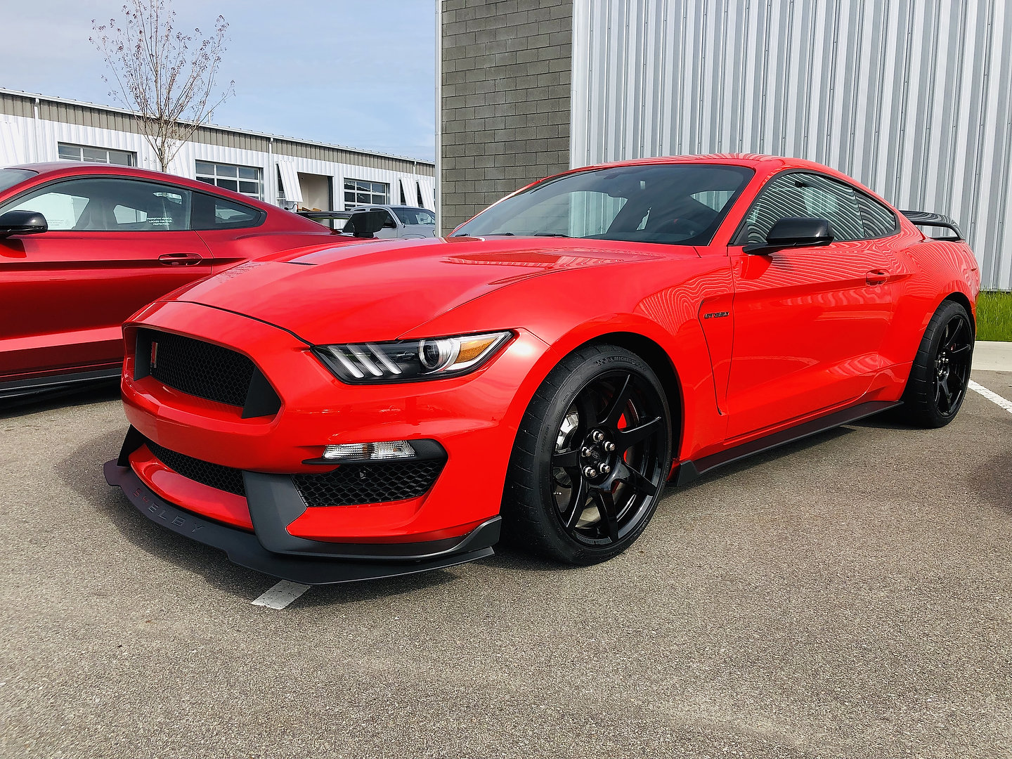 2019 Ford Mustang Shelby GT350 First Drive Review: More of ...